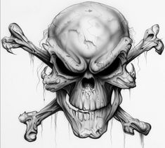 skull | Bird Tattoos
