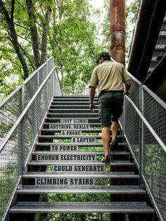 Casa Sustentable en el Árbol / Mithun The Sustainability Treehouse / Mithun – Plataforma Arquitectura