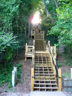 282 Steps Up Mt. Baldhead, Saugatuck, Michigan.  We try to climb these every time we go to Saugatuck!  Burn, Baby!