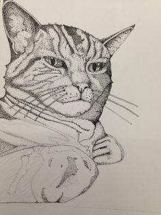 Cat - pointilism. by Alex Preston, via Behance