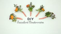 You can make a succulent boutonnière for your wedding or next formal party with this easy video DIY tutorial.