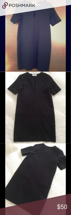 Everlane Tunic Great black tunic dress, gorgeous thick material. The dress is new, without tags. 73% viscose, 23% polyamide, 4% elastene. Everlane Tops Tunics
