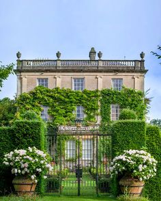 english country house. Highgrove House. Prince Charles home. Terracotta tubs hydrangea. Gate.