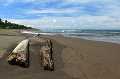 tortuguero beach attraction seats   - Costa Rica