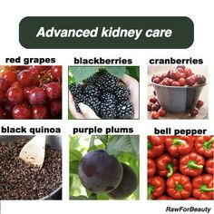 Foods good for the kidneys
