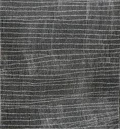 rerylikes:    Dorothy Napangardi. Mina Mina. acrylique sur toile, 153 x 143cm © Adagp