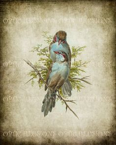 vintage birds | Request a custom order and have something made just for you.