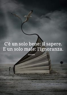 Bitch Quotes, Up Quotes, Words Quotes, Best Quotes, Favorite Quotes, Parma, Motivational Phrases, Inspirational Quotes, I Love Books