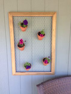 Old picture frame, chicken wire and potted plants