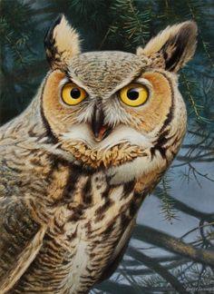 Night Watch acrylic, painting by artist George Lockwood Owl Pictures, Great Horned Owl, Bird Drawings, Owl Art, Wildlife Art, Bird Feathers, Beautiful Birds, Landscape Art, Pet Birds