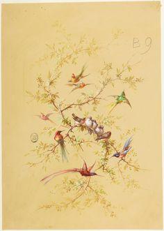 Drawing, Design for Wallpaper and Textile: Flowers and Birds, century Flower Ceiling, Relationship Drawings, Little Birds, Botanical Art, Bird Art, Art Pictures, Flower Art, Wall Murals, Photo Wall