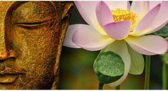 Phỉ báng và không tin vào Thần Phật sẽ có kết cục gì?