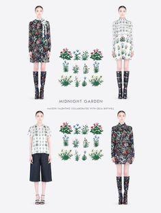 Modern Colorist - Valentino - Midnight Garden