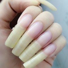 Long Fingernails, Long Nails, Nail Garden, Secret Nails, Plain Nails, Nail Growth, How To Grow Nails, Cool Nail Designs, Natural Nails
