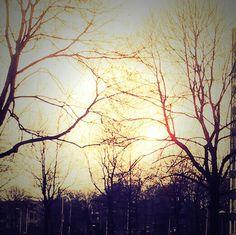 Sun down.. Almost...