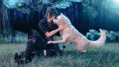 Final Fantasy XV Noctis wolf