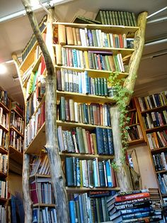 A book tree for my future library📚 Beautiful Library, Dream Library, Library Books, Future Library, Tree Bookshelf, Bookshelves, Tree Shelf, Bookshelf Ideas, Bookshelf Styling
