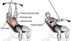 exercises for upper back Target your latissimus dorsi with the incline straight-arm pull-down! Your pecs, posterior delts, triceps, and various back muscles act as synergists. Good Back Workouts, Leg Day Workouts, Chest Workouts, Chest Exercises, Shoulder Exercises, Training Exercises, Training Videos, Workout Exercises, Workout Tips
