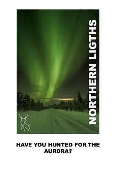 All of our tours are geared towards showcasing the natural wonder of Lapland. Experience bucket list adventures under the stars hunting for the Northern Lights or snowshoeing across the open fells looking down on forests covered in a blanket of Snow. Geomagnetic Storm, Finnish Words, Light Pollution, Adventure Bucket List, Snowshoe, See The Northern Lights, Arctic Circle, Midnight Sun, Adventure Photography