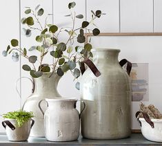 eucalyptus in medicine vase Farmhouse Vases, Farmhouse Chic, Farmhouse Pottery, Small Urns, Eucalyptus Branches, Recycled Glass Bottles, Subtle Textures, Custom Rugs, White Vases