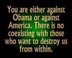 You Are Either Against Obama's Progressive Agenda Or Against America...We Are Being Destroyed From Within...