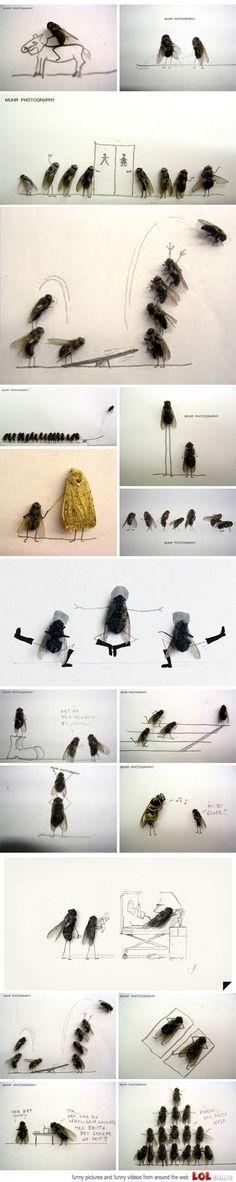 Awesome Bug Art (Magnus Muhr)
