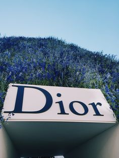 DIOR SS 2016 FLOWERS - Paris #visualtherapy #fashion #pfw
