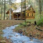 Rustic Retreat: Log Cabin in the Woods.