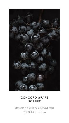 The grapiest of grapes is turned into a gorgeous deeply purple sorbet is the perfect fall dessert! Concords are only around for a short season so grab them while you can! Gelato Ice Cream, Ice Cream Maker, Vanilla Ice Cream, Grape Soda, Grape Juice, Granny Smith, Soft Serve, Fall Desserts, Ice Cream Recipes