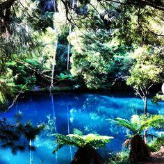 The blue lake at Jenolan Caves Australia Explore nsw Beautiful Places To Visit, Great Places, Places To See, Places Around The World, Around The Worlds, Jenolan Caves, Places To Travel, Travel Destinations, Blue Mountains Australia