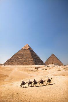 Pyramids & camels, Giza