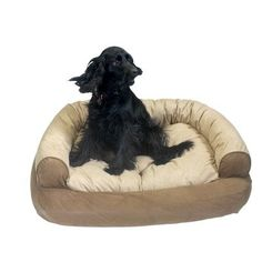 Snoozer Overstuffed Luxury Pet Sofa, Large, Bebop Apple