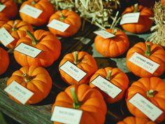 13 Stylish Halloween Wedding Ideas