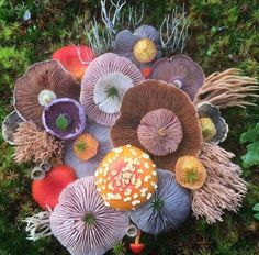 Nature has unlimited potential for us to explore and experience. Nature is the greatest art ever been created. Meet Jill Bliss, an artist Mushroom Art, Mushroom Fungi, Mushroom Species, Mushroom Ideas, Mushroom Hunting, Wild Mushrooms, Stuffed Mushrooms, Organic Forms, Organic Patterns