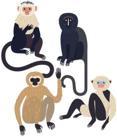 Monkeys - Laura Edelbacher Illustration & Graphic Design - My list of beautiful animals Illustration Singe, Pattern Illustration, Jungle Illustration, Kids Brand, Costume Africain, Edition Jeunesse, Animal Graphic, Grafik Design, Art Plastique