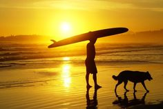 surf pic with dog