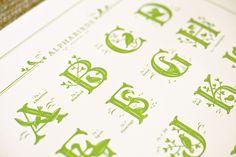Alphabirds Print