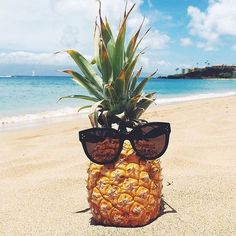 Be a pineapple! Stand tall. Wear a crown. And stay sweet on the inside
