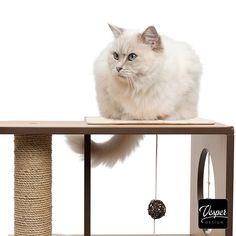 Catit Vesper Box Large - Compact Adventure World with Extra-long Scratching Post -  Multiple levels and lounging spots offer the opportunity to relax and play while the extra-long scratching pillar invites your cat to sharpen its claws in an elongated posture. #cat #furniture #design #homedecor #interiordesign