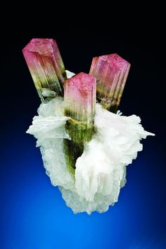Bi-color Tourmaline