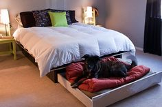 DIY Hidden Slide Out Bed Under your Bed for your Dog | Tiny House Pins