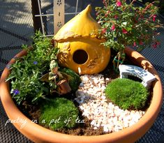 Happy May Day! I'm so excited to share what I've been working on with you . I created two fairy gardens for the back yard. I even too...
