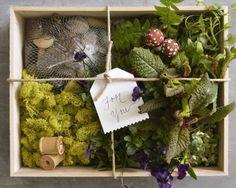 DIY Fairy Garden | Little Gatherer