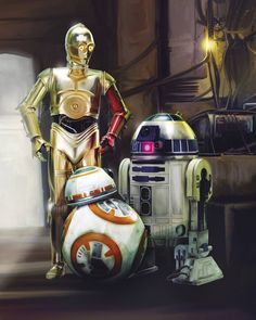 These are EXACTLY the droids I was looking for! #StarWars #TheForceAwakens #C3PO #R2D2 #BB8 #Droid #AnakinSkywalker #LukeSkywalker #ObiWan #PrincessLeia #PoeDameron #Rey #Finn #ANewHope #EmpireStrikesBack #ReturnOfTheJedi #ROTJ #StarWarsTrilogy #MilleniumFalcon #XWing