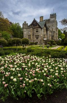 Hatley Castle, British Columbia / Canada (by Andrew Wozniak).