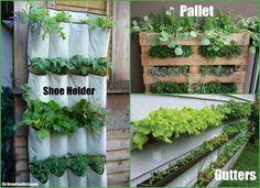 Good vertical garden idea!