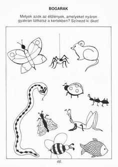 Exercise For Kids, Preschool, Bee, Snoopy, Butterfly, Album, Education, Animals, Fictional Characters