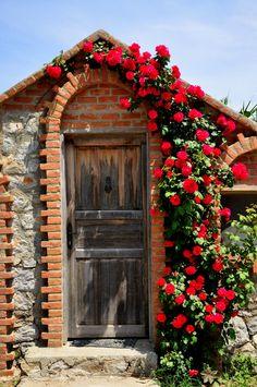 doorways & arches & roses <3