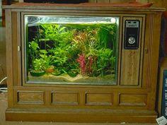 TV-to-aquarium