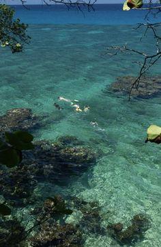 Snorkelling in #Jamaica